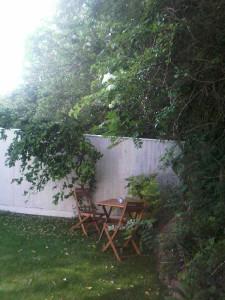 The enclosed garden space
